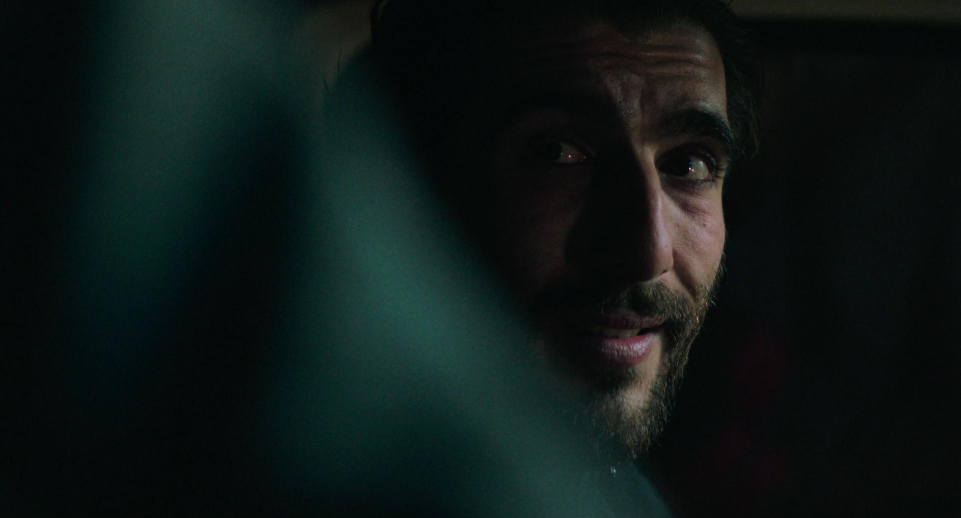 Nightshade <br/> <span>Shady El-Hamus </span>